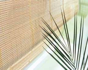 light wooden blinds