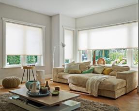 cream duette blinds